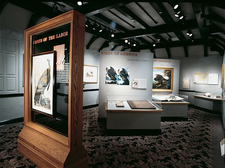 An interior shot of an exhibit at Kentucky's Audubon Museum