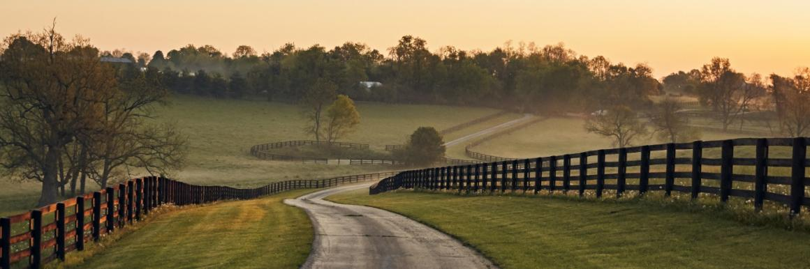 A road stretches past equestrian fencing and rolling bluegrass hills in Kentucky
