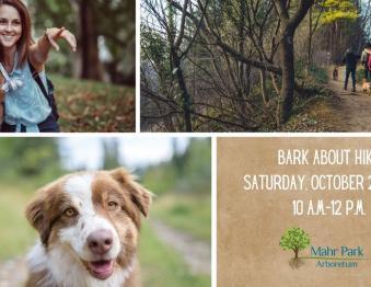 Bark About Hike Photo