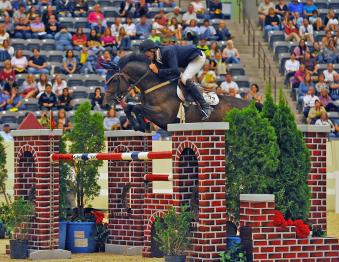 National Horse Show Photo