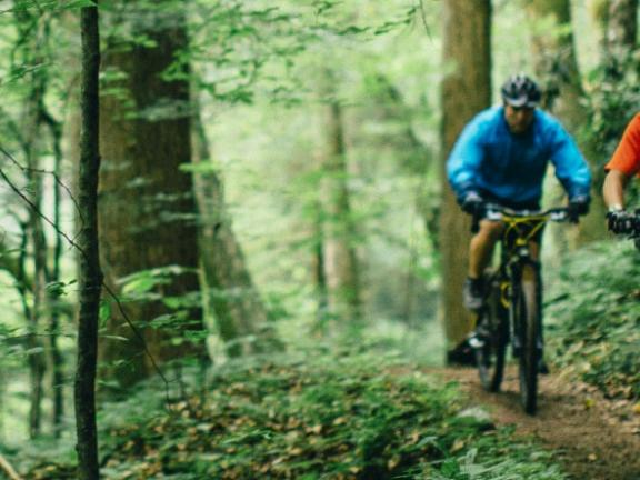 Two people bike through a dense forest in Kentucky