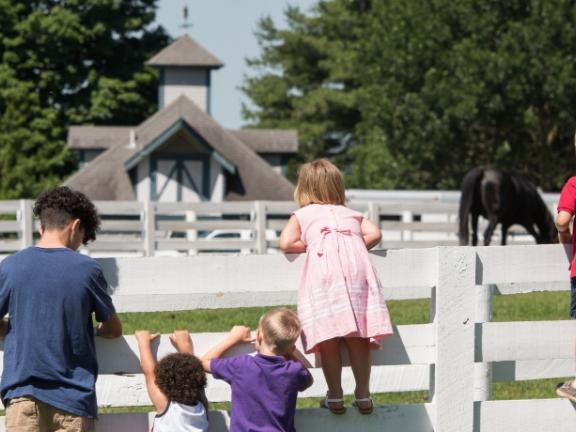 Kids hang off of a horse fence at Kentucky Horse Park, as a horse grazes in the background
