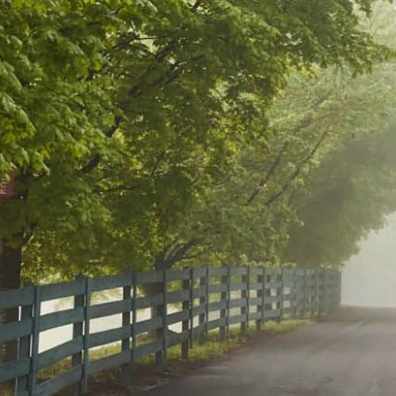 A long drive lined with horse fencing leads to Buffalo Trace Distillery in Frankfort, KY