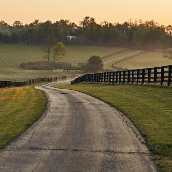A road passes through Kentucky Horse Country, with horse fencing lining both sides of the road