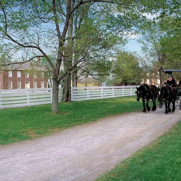 Horses pull a carriage down a dirt road at Shaker Village of Pleasant Hill