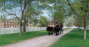 A horse-drawn carriage travels a historic dirt turnpike at Shaker Village of Pleasant Hill