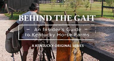 Title card for Behind the Gait