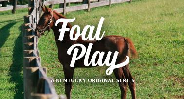 Title Card for Foal Play video series
