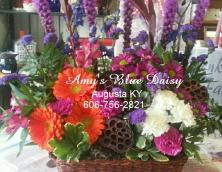 Amy's Blue Daisy Florists & Gift Shop Photo