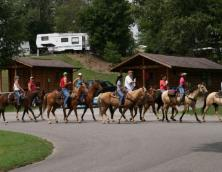 Wrangler's Riding Stables Photo
