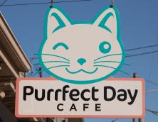 Purrfect Day Cafe Photo