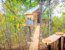 EarthJoy Treehouse Adventures Photo