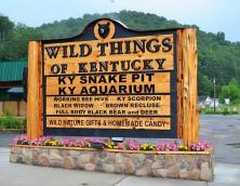 Wild Things of Kentucky Photo