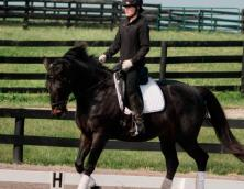 Meadow Lake Equestrian Center Photo