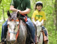 Whispering Woods Riding Stables Photo