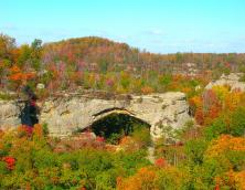 Daniel Boone National Forest, Stearns Ranger District Photo
