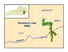 Buckhorn Lake Wildlife Management Area Photo