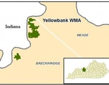 Yellowbank WMA Photo