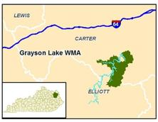 Grayson Lake Wildlife Management Area Photo