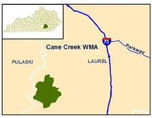 Cane Creek Wildlife Management Area Photo