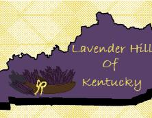 Lavender Hills of Kentucky, LLC Photo