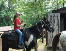 Cumberland Falls Horse Riding Stables Photo