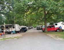 Sandhill RV & Primitive Campground Photo