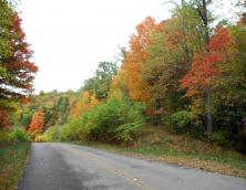 Zilpo Road National Forest Scenic Byway Photo