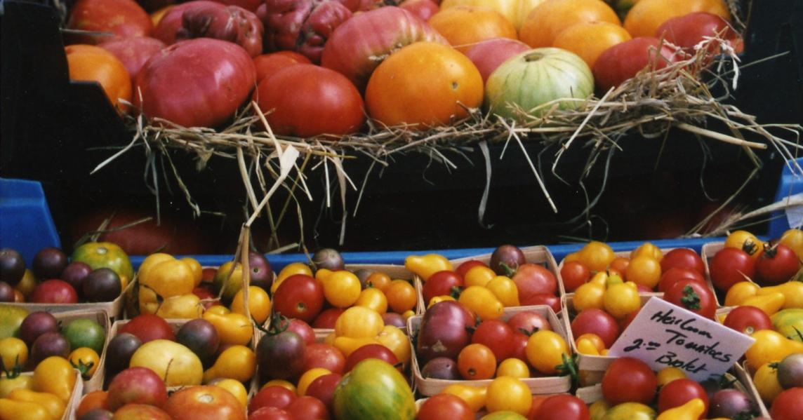 Tomatoes for sale at a Kentucky farmers market