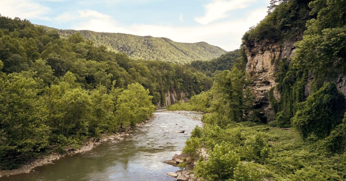 A scenic view in the Kentucky Appalachians