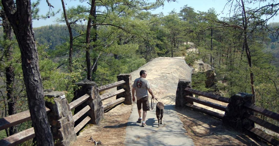 A man hikes the Sky Bridge Trail at Natural Bridge with his dog