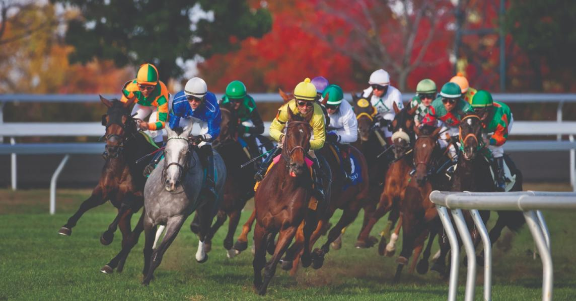 Horses barrel down the track at a Kentucky race track
