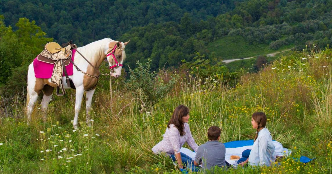 A family enjoys a picnic on a hillside in Eastern Kentucky