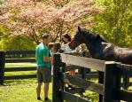 Kentucky Horse Park Photo
